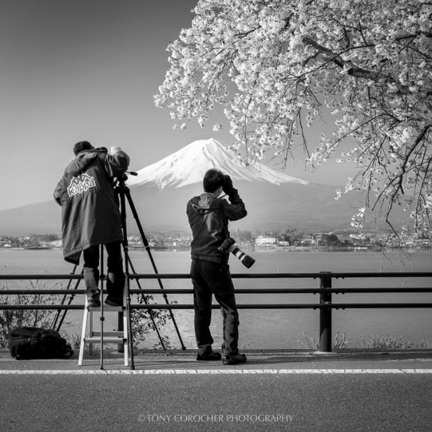 Japan Japanese Cliche S Tony Corocher Documentary Fine